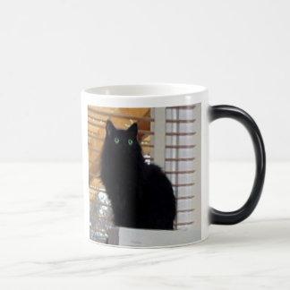 Maxie Morphing Mug