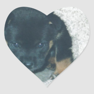 maxie puppy heart sticker