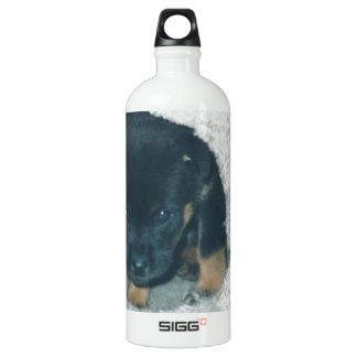 maxie puppy SIGG traveller 1.0L water bottle