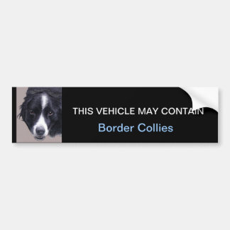 may contain Border Collies Bumper Sticker