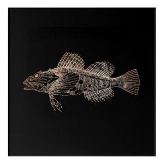 Mazola Deep Sea Fishes Black Pink Rose Gold Blush Acrylic Print