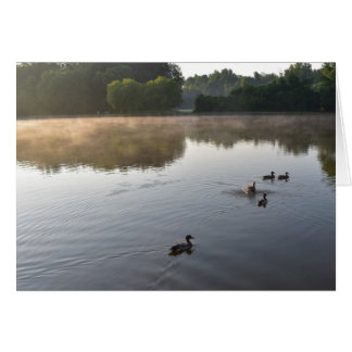 McAlpine Creek Park, North Carolina, Greeting Card