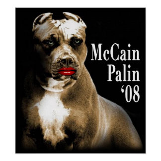 McCain Palin Poster