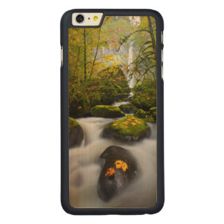McCord Creek Bigleaf Maple | Columbia Gorge, OR Carved Maple iPhone 6 Plus Case