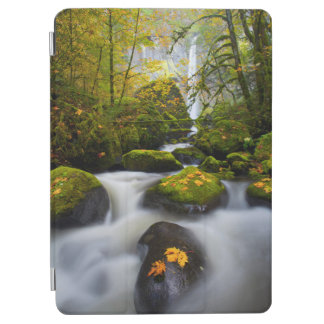 McCord Creek Bigleaf Maple | Columbia Gorge, OR iPad Air Cover