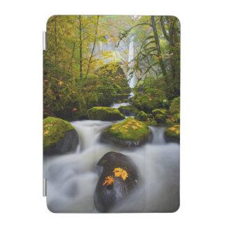 McCord Creek Bigleaf Maple   Columbia Gorge, OR iPad Mini Cover