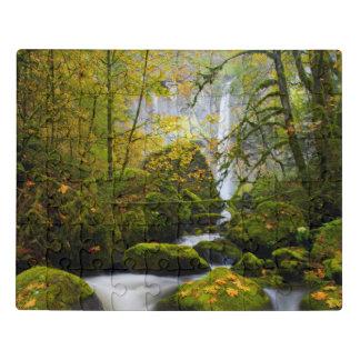 McCord Creek Bigleaf Maple | Columbia Gorge, OR Jigsaw Puzzle