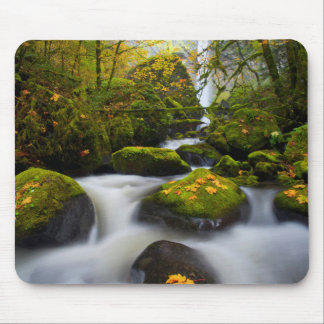 McCord Creek Bigleaf Maple | Columbia Gorge, OR Mouse Pad