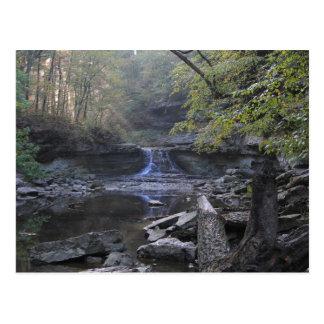 McCormicks Creek Canyon Falls Postcard