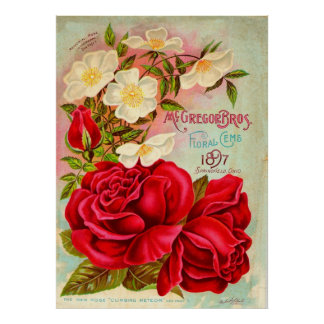 McGregor Bros. Floral Gems Advertisement Poster
