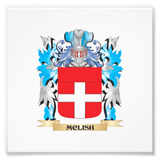 Mclish Coat of Arms - Family Crest Art Photo