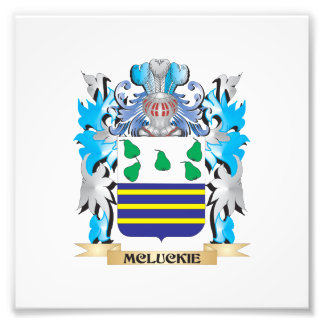 Mcluckie Coat of Arms - Family Crest Art Photo