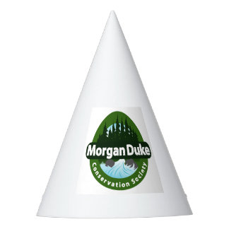 MDCS Party Hats