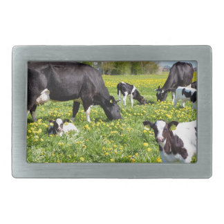 Meadow full of dandelions with grazing cows rectangular belt buckle