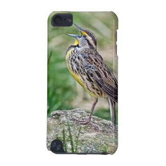 Meadow Lark Singing iPod Touch (5th Generation) Cover