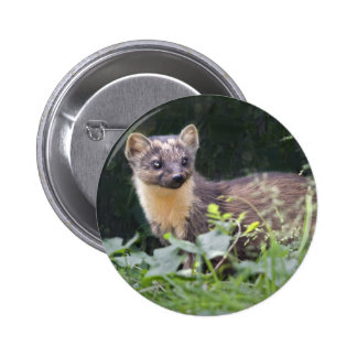 Meadow Marten Badge