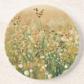 Meadow Morning Dew Coasters