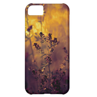 Meadow sunset case for iPhone 5C