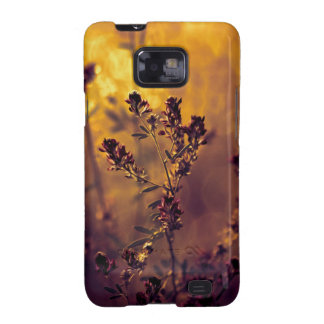 Meadow sunset samsung galaxy s2 cases