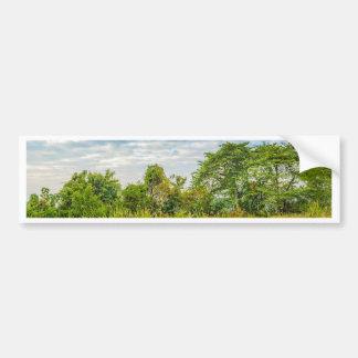 Meadow Tropical Landscape Scene, Guayaquil Bumper Sticker