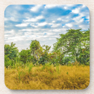 Meadow Tropical Landscape Scene, Guayaquil Coaster