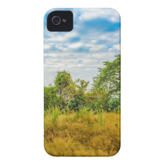 Meadow Tropical Landscape Scene, Guayaquil iPhone 4 Case