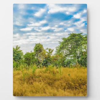 Meadow Tropical Landscape Scene, Guayaquil Plaque