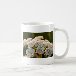 meadowflowersbywhacky (5 of 13).JPG Coffee Mug