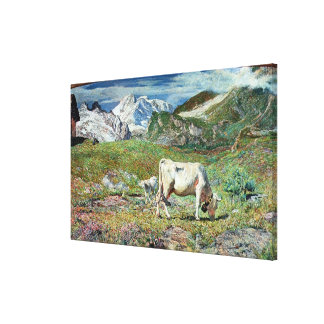 Meadows in Spring Stretched Canvas Print
