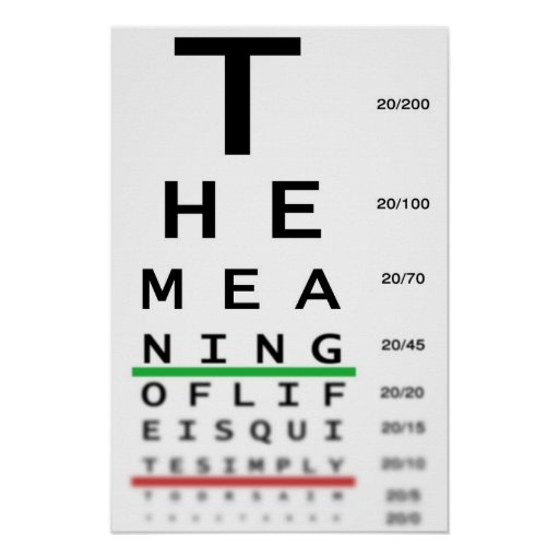 Meaning Of Life Eye Chart Posters