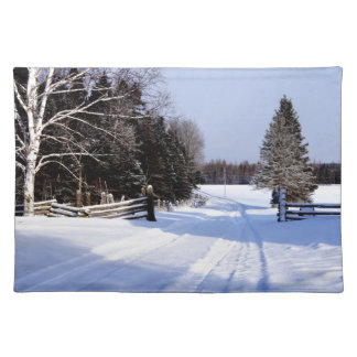 Meanwhile in Canada, Winter! Placemat