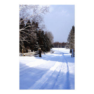 Meanwhile in Canada, Winter! Stationery
