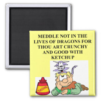 meddle not with fantasy dragons proverb magnet