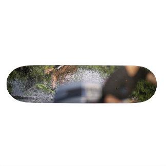MeddockPhoto_Skateboard_WSkate Skate Deck