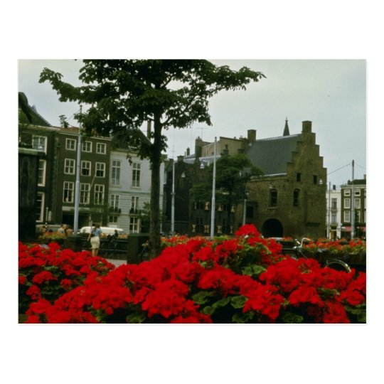 Mediaeval Prison In The Hague flowers Postcard