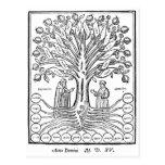 Mediaeval Tree of Sciences