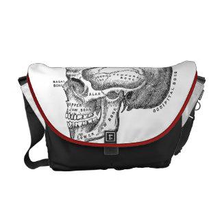 Medical Skull Bag - Anatomy Bag Messenger Bag