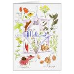 Medicinal Herbs Echinacea Poppy Garlic Notecard Cards