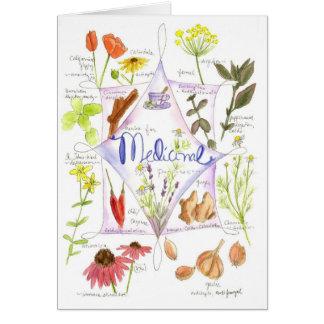 Medicinal Herbs Echinacea Poppy Garlic Notecard
