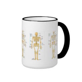 Medicine: Skeleton Coffee Mug