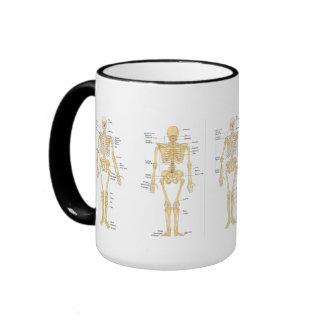 Medicine: Skeleton Ringer Mug