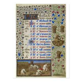 Medieval calendar: July Postcard