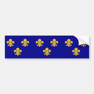 Medieval France, France flag Bumper Sticker