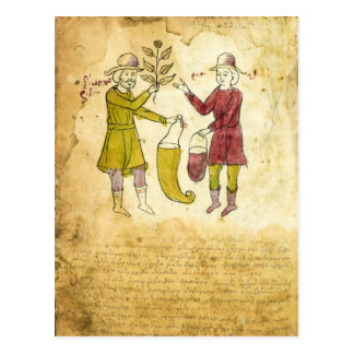 Medieval Herbalist Manuscript illustration card