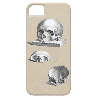 Medieval Human Skull Cheselden Drawing iPhone 5 Case