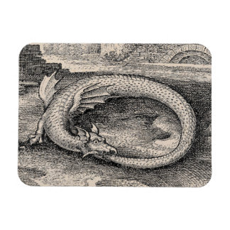 Medieval Ouroboros Dragon Magnet