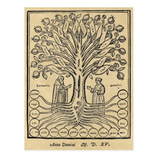 Medieval Tree of Science Post Cards