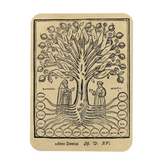 Medieval Tree of the Sciences Rectangular Photo Magnet