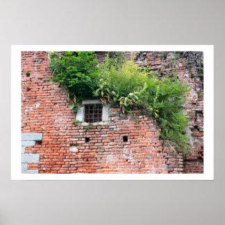 Medieval Window Detail Poster