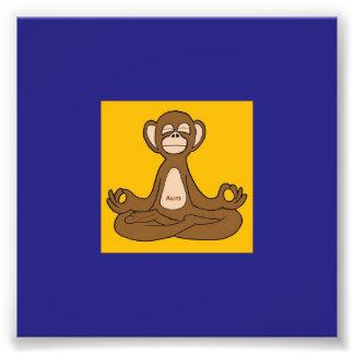 Meditating Monkey Photo Print
